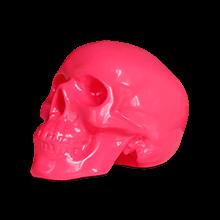 streuplan-shop-skull-220x220